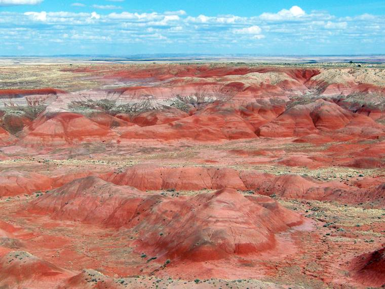 things to do in painted desert
